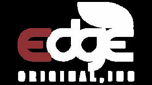 EOI Logo White.png