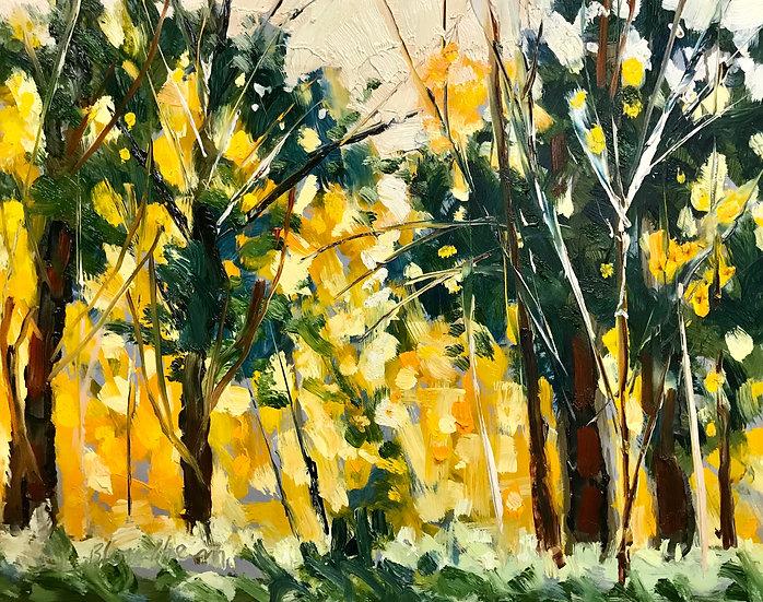 Fall on Deer Woods Trail - Linda Blondheim