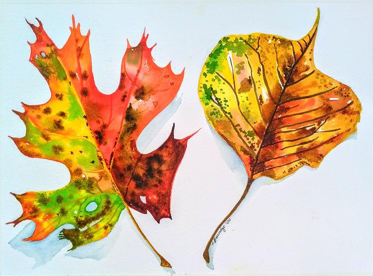 Evidence of Autumn - Christine A Brundige