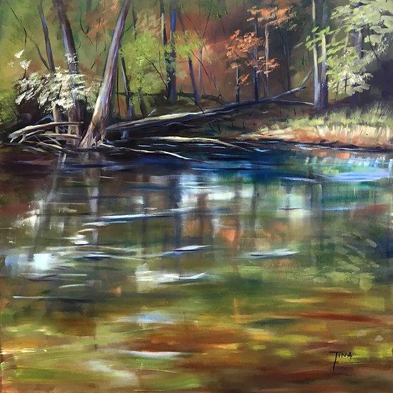 River Shine - Tina Corbett