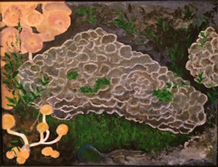 Fungi - Leanne Pflaum