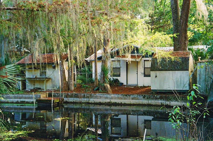 Cross Creek Fish Camp - Michael Mills