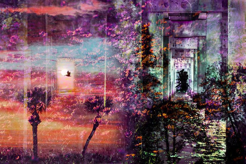 Planetary Crossroads - Michelle Nagri