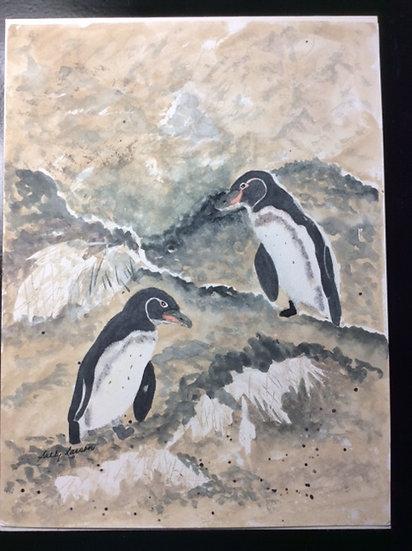 Penguins, Galápagos Style - Sally Larson