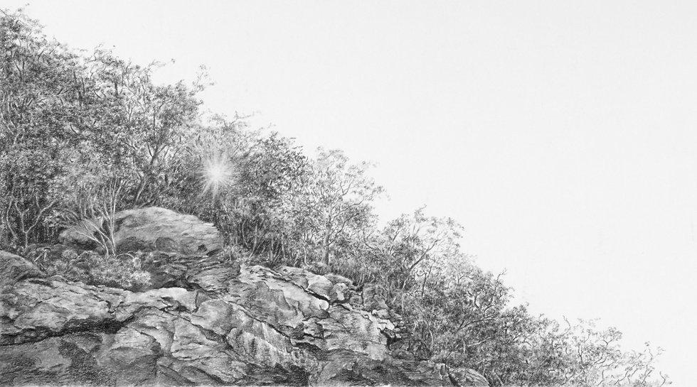 Blue Ridge Sonnet #13- AnaMarie Liddell