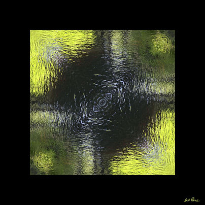 paine-swamp-faces-reflections - William