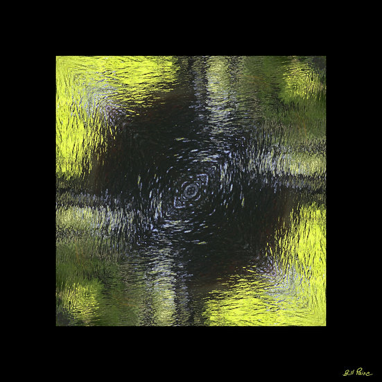 Swamp Faces – Reflections - Bill Paine