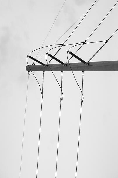 Wilson_the lines - Kerry Wilson.png