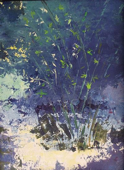 Kanapaha Bamboo Dreaming - Davis McGlathery