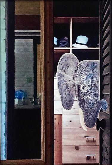 Elephant in the Room - Stephanie Haas