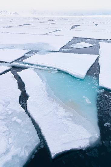 Polar Geometry - Vicki Santello