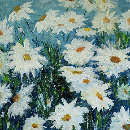 Field of Daisies - Linda Holmes