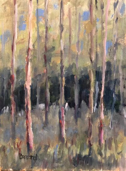 Studio View - Harold Barrand