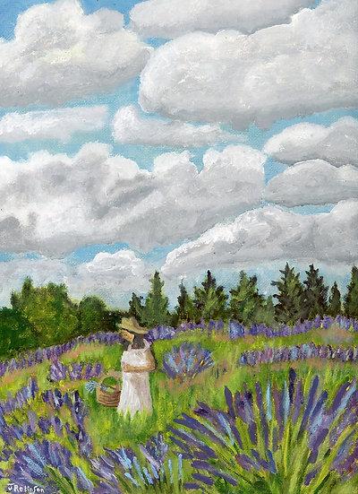 Oregon Lavender Garden - Judy Robinson