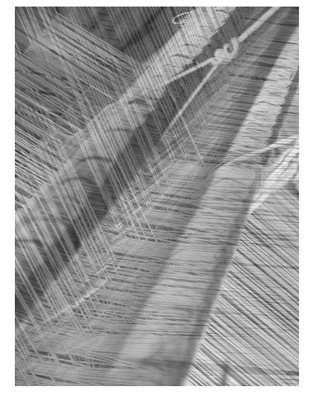 Slavery Threads - BW - Maria Leite