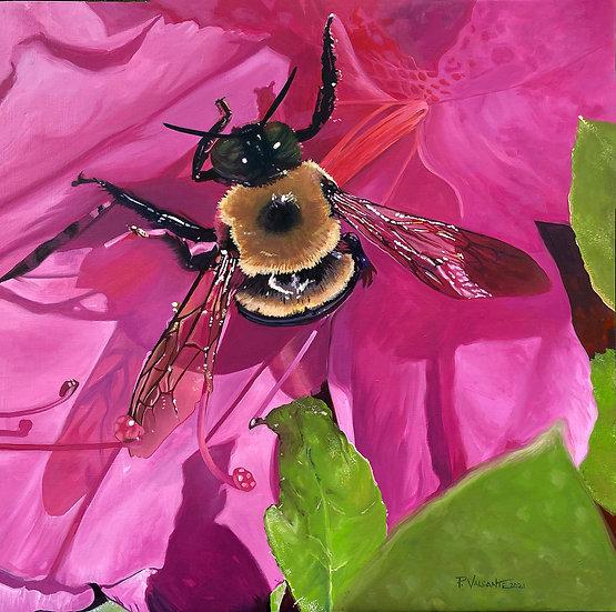 Taste of Spring - Pam Valcante