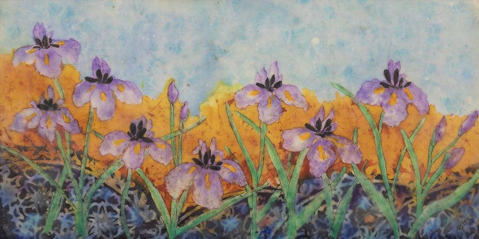 Dancing Irises - Debra Lindberg