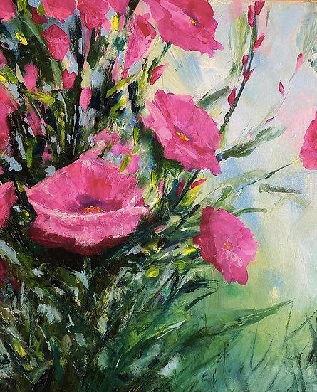 Pink Poppies - Linda Holmes