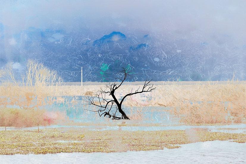 Sweetwater Tree en Blue - Michelle Nagri