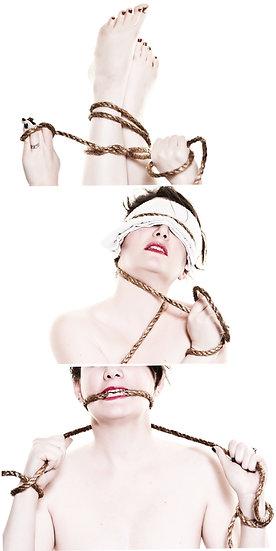 Bound (Tryptic) - Kim Hurt
