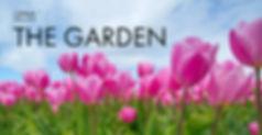 submissionimage_garden.jpg