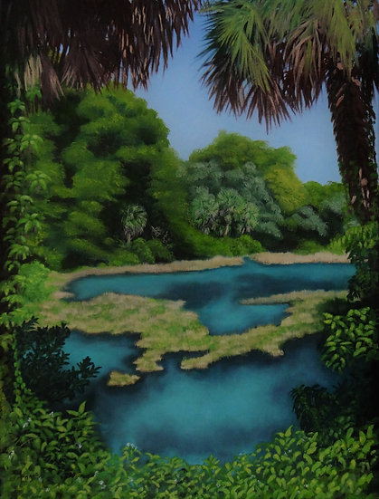 Rainbow Springs - Nancy Caroline Fazio