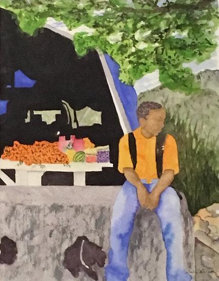 St Maarten Bus Stop - Sally Larson