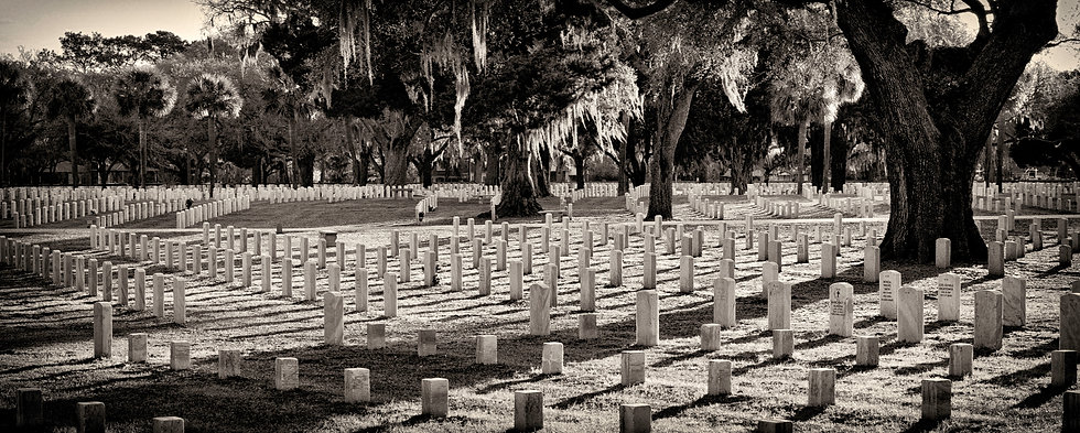 U.S. National Cemetery Beaufort, S. C. - Brooke Williams