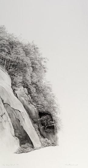Blue Ridge Sonnet #16- AnaMarie Liddell