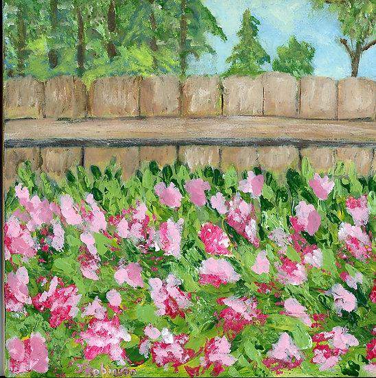 Backyard Garden While Practicing - Judy Robinson