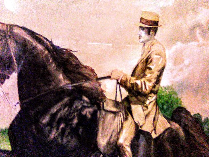 Saddle Horse Champion - Anne Lawson