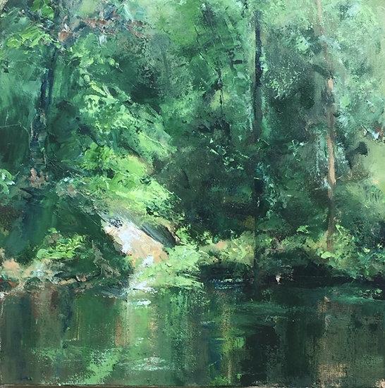River Rise - Diane Brody