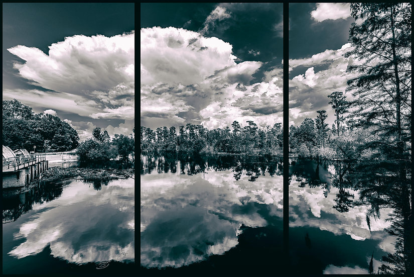The Sill at Okefenokee Swamp - Craig Walters