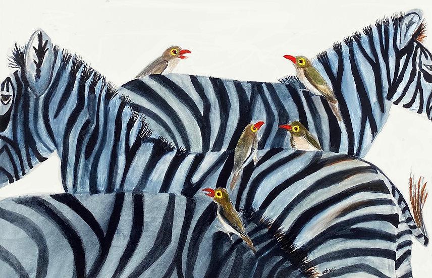 Zebras & Friends - Stephanie Haas