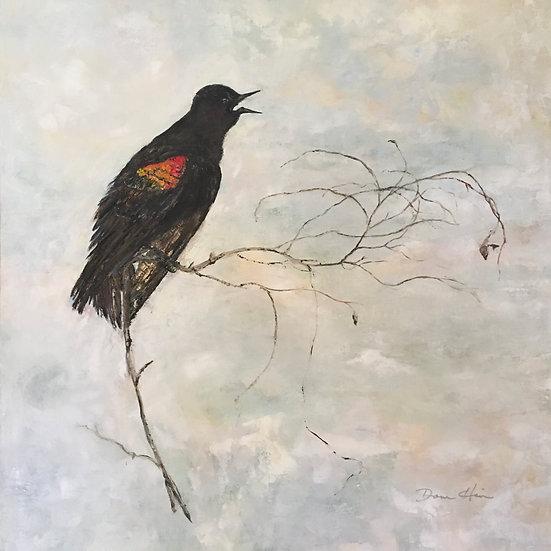 Red-winged Blackbird - Donna Heider