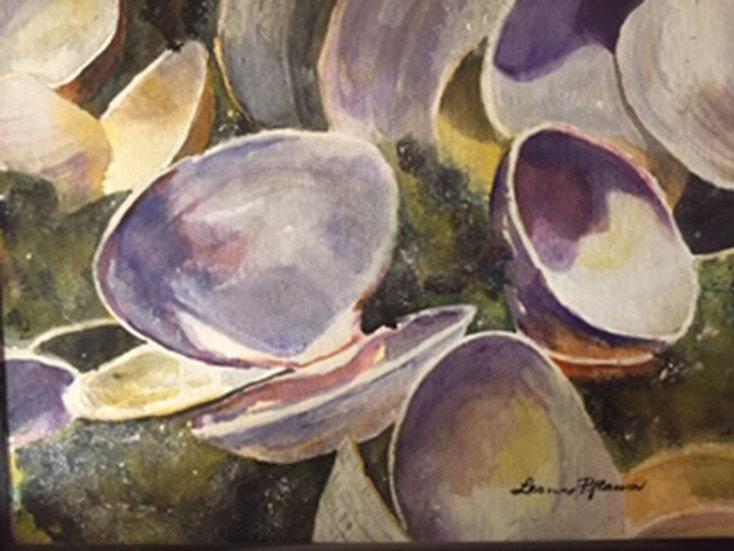 Shells - Leanne Pflaum