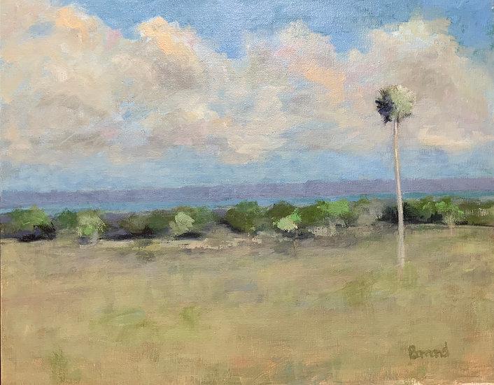 Orange Lake View - Harold Barrand