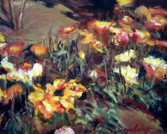 Bed of Flowers - Robert Dornberg