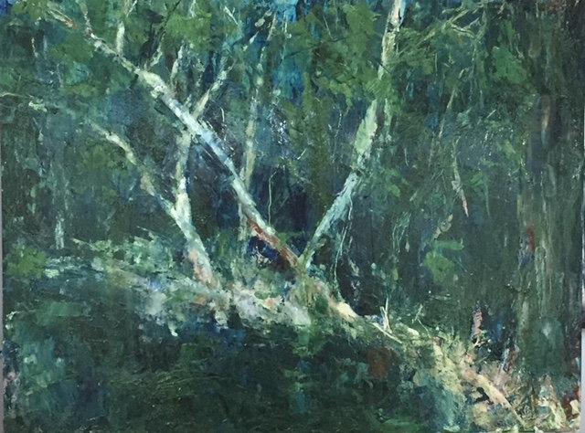 December Woods - Diane Brody
