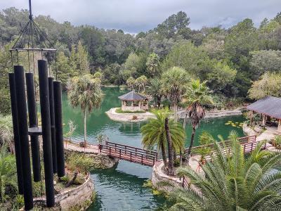 Cedar Lakes Woods and Gardens - Julia Sullivan