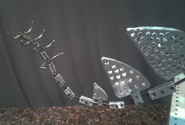 stegosaurus4.jpg