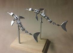 dolphins (2).JPG