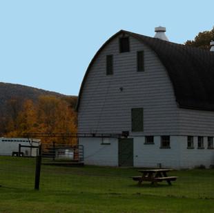 Andrews_Farm_102119 (27).jpg