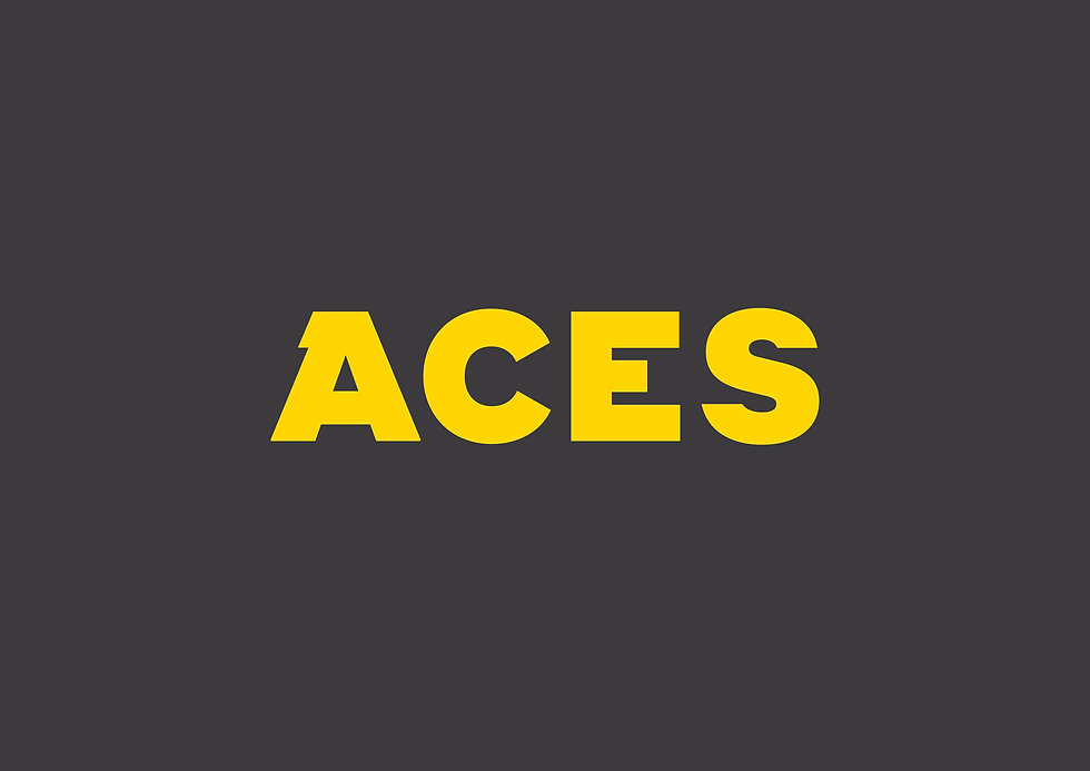ACES LOGO YEL ON CHAR.jpg