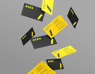 ACES Businesscards.jpg