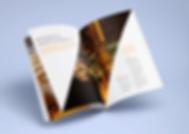 Layout design, catalog design, annual report, brochure design