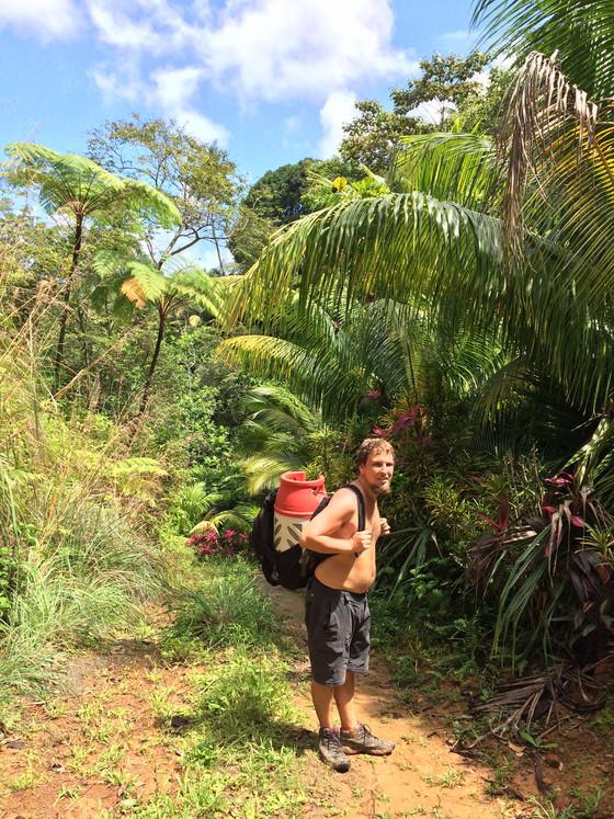 Dominika - Életképek a farmról