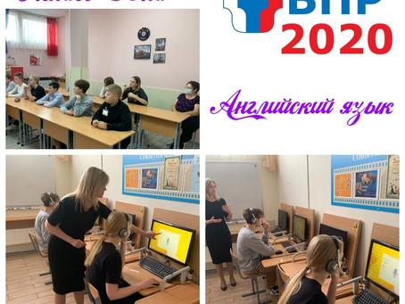Всероссийские проверочные работы. 29 сентября 2020. Английский язык - 8 класс. Обществознание  - 7 к
