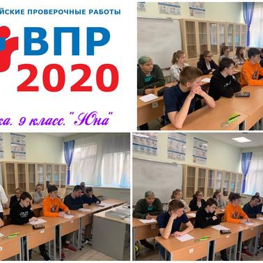 Всероссийские проверочные работы. 14 сентября 2020. Физика - 9 класс, Биология - 8 класс.