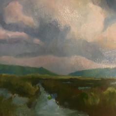 Marsh at Wellfleet